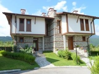 Chalet with awesome views - Dobrinishte vacation rentals