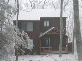wintergreen ski hot tub hike golf pool pets firepl - Montebello vacation rentals