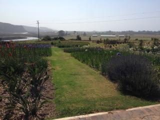 DankiPa Eco Lodge & Guest House Unit 1 - Plettenberg Bay vacation rentals