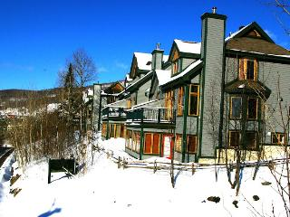 Tremblant Slopeside - Ski in Ski Out - 5 bdr - Lac-Superieur vacation rentals