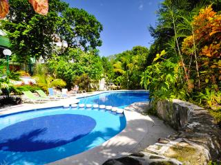 Playa del Carmen Paradise Private Retreat Poolhome - Guerrero vacation rentals