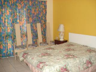 Newly Renovated Ground Floor Negril Jamaica Studio - Negril vacation rentals