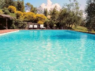 Il Roseto- serenity of the countryside in restored farmhouse with pool - Siena vacation rentals