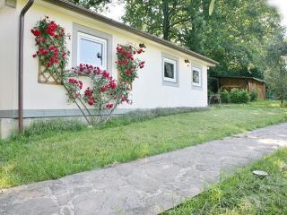 The Poet's Home on the hills of Florence. - Florence vacation rentals