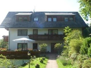Appartment Wasserfall - Gutach vacation rentals