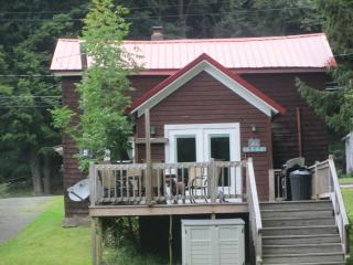 Delaware River Getaway - Downsville vacation rentals