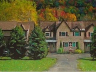 CODA Estates - Luxury Condo & Spectacular Views - Ellicottville vacation rentals