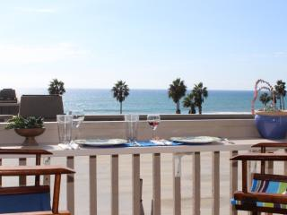 Ocean View & Boogie Boards, too! - Vista vacation rentals
