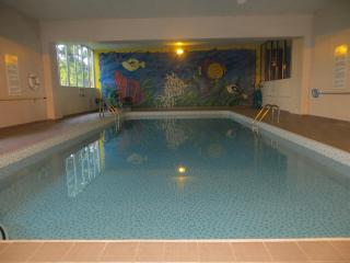 Classy, Furnished Condo With Indoor Pool for Rent - Kitchener vacation rentals