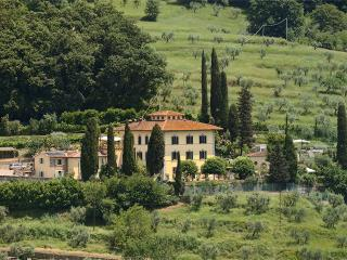 Beautiful Historic Villa Parri in Tuscany Countryside - San Baronto vacation rentals