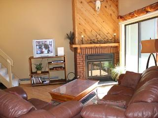 TH307I Pretty Condo w/Wifi, Clubhouse, Mountain Views - Silverthorne vacation rentals