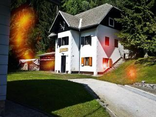Stress-less house, Cottage in Natura 2000 region - Crnomelj vacation rentals