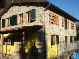 House in Lucca San Martino - TFR67 - Lucca vacation rentals