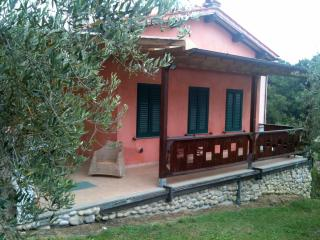 Lucca countryside house WiFi Olive Groves - TFR4 - Tuscany vacation rentals
