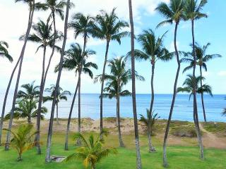 Hale Kai O'Kihei 1 Bedroom 318 - Kihei vacation rentals