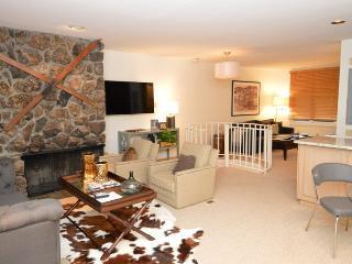 Fasching Haus Unit 440 - Aspen vacation rentals