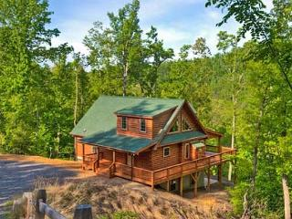 Blue Bear Cabin | 3 BR Asheville Area | Mountain Views | Gas Fireplace - Columbus vacation rentals