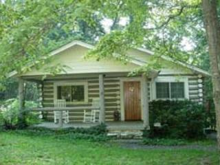 Black Mountain Cabin - Black Mountain vacation rentals