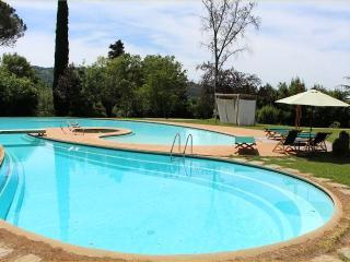 Apt Viola in Villa with Pool and Sauna.Versilia - Camaiore vacation rentals