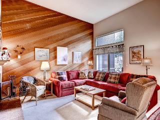 Winterpoint 20 - Walk to Lifts/Walk to Town - Breckenridge vacation rentals