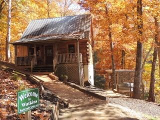 Mountainside Peacefullness- The Watkins Cabin - Bryson City vacation rentals