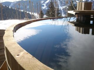 chalet fan la bise - La Clusaz vacation rentals
