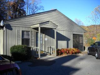 Golf Course Condo in the Smoky Mountains - Franklin vacation rentals