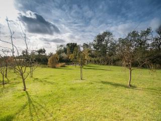 Pond View - Halstead vacation rentals