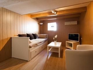 [21] Lovely studio apartment with wifi and wooden floor - Seville vacation rentals