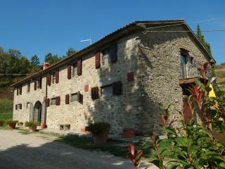 Nature and genuine hospitality in Tuscany - Terranuova Bracciolini vacation rentals