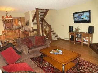 Crested Mtn. North #J5 - Almont vacation rentals