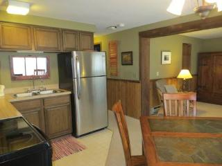 Three Seasons #336 - Crested Butte vacation rentals