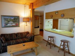 Wood Creek #404 - Crested Butte vacation rentals