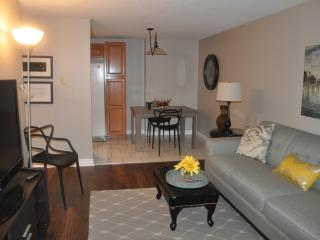 Fully Furnished /serviced Condo - Lakeshore vacation rentals