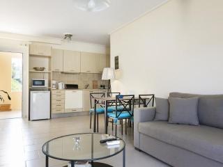 Eucalyptus Apartments - Anemone - Katelios vacation rentals