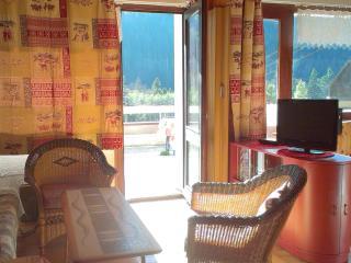 Appart 4-5 p,  les portes du soleil - La Chapelle-D'Abondance vacation rentals