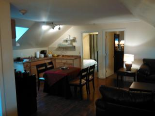 Apartment Rental for Large Party - Rhode Island vacation rentals