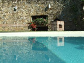 I Casaloni,apartments in farmhouse in Chianti - Greve in Chianti vacation rentals