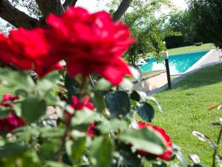 Charme & Relax in Tuscany close to Florence - Reggello vacation rentals
