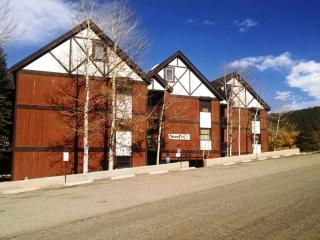 3 BR/ 2 BA Condo, WiFi, Balcony, 3 Blocks to Lift - New Mexico vacation rentals
