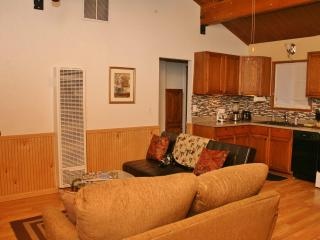 White Woodland Cabin - Big Bear Area vacation rentals