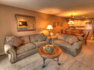 C212 Cinnamon Ridge - Mountain House - Keystone vacation rentals