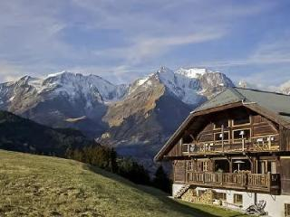 Authentic Chalet La Montagne with Spa, Gym, Private Chef & direct Ski Access - Rhone-Alpes vacation rentals