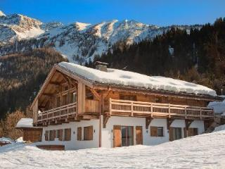 Luxurious Alpine Chalet Amano with Hot Tub, Spa, Views & Ski-In/Ski-Out - Haute-Savoie vacation rentals