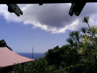 Shibui Vacation Rental - Woodston vacation rentals