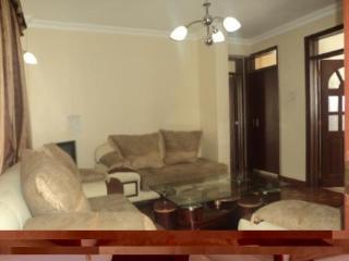Exquisite Furnished  Apartment - Kenya vacation rentals