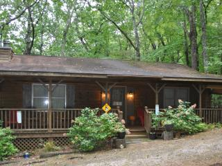 Katydid Cabin in NE Georgia Mountains - Clarkesville vacation rentals