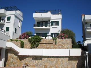 BEAUTIFUL VACATION RENTAL - Alacati vacation rentals