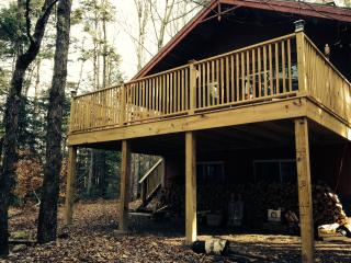 Cozy Chalet  In The Pines, Only 5 Mi From Mt Snow - West Wardsboro vacation rentals