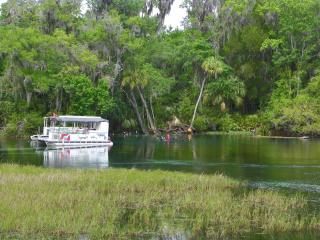 Rainbow River Home - Directly on Main Dive Springs - Yankeetown vacation rentals